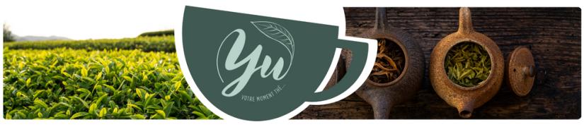Les origines du thé | Yu